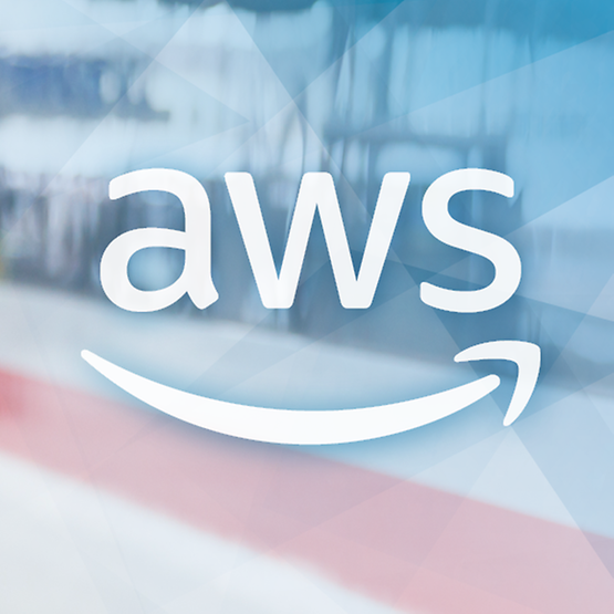 DB_Systel_Amazon WorkSpaces_aws